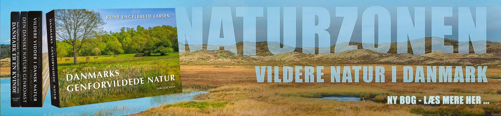 NY BOG: Danmarks genforvildede natur